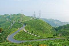 Straße entlang Teeplantage auf dem Berg Stockfoto