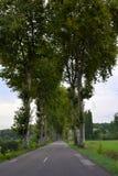 Straße in Frankreich in Dordogne stockbild
