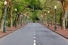 Straße in Furnas Lizenzfreies Stockfoto