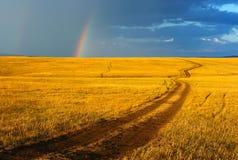 Straße, gelbe Hügel und Regenbogen. lizenzfreie stockfotos