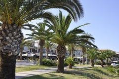 Straße gestaltet mit Palmen von der Rethymno-Stadt von Kreta in Griechenland lizenzfreies stockfoto