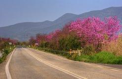 Straße in Griechenland Lizenzfreies Stockbild