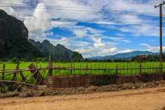 Straße, Häuschen und grünes terassenförmig angelegtes Reisfeld Lizenzfreie Stockfotos