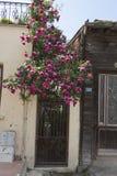 Straße in Heybeliada, Istanbul, die Türkei Leer, touristisch lizenzfreie stockbilder