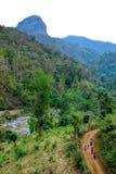 Straße im Berg Stockfotografie