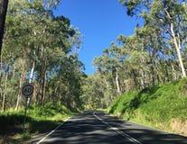 Straße im Berg Stockfotos