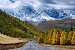 Straße im Berg Stockbild
