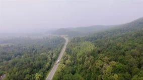 Straße im dichten nebeligen Wald stock video footage