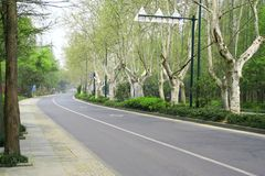 Straße im Frühjahr Stockfotografie