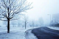 Straße im Frost und im dichten Nebel Stockbild