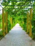 Straße im Grün Stockbilder