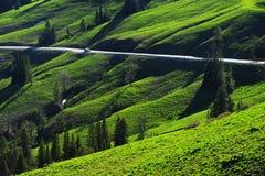 Straße im grünen Hügel Stockfotos