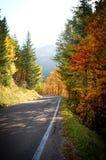 Straße im Herbst Lizenzfreie Stockbilder