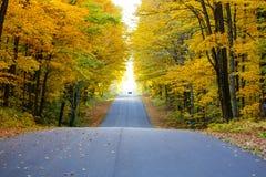 Straße im Herbst Stockfotografie