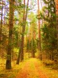 Straße im Herbstkoniferenwald im Stil des Impressionismus Lizenzfreie Stockfotos