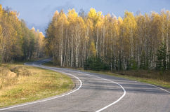 Straße im Herbstwald Lizenzfreie Stockfotografie