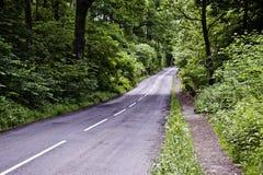 Straße im Holz Lizenzfreie Stockbilder