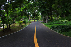 Straße im Park Lizenzfreies Stockbild