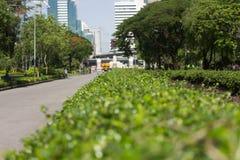 Straße im Parkausgang zur Stadt Lizenzfreie Stockfotografie