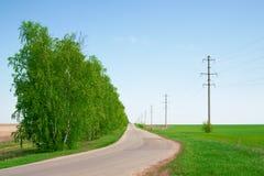 Straße im russischen Wald Stockfoto