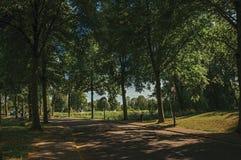 Straße im Schatten von belaubten Bäumen nähern sich Kanal mit blauem Himmel und Sonnenuntergang bei Weesp Lizenzfreie Stockbilder