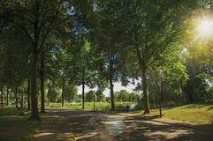 Straße im Schatten von belaubten Bäumen nähern sich Kanal mit Licht des blauen Himmels und des Sonnenuntergangs bei Weesp Lizenzfreie Stockfotos