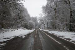 Straße im Schnee im Wald Stockfoto