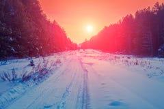 Straße im schneebedeckten Wald des Kiefernwinters Lizenzfreie Stockbilder
