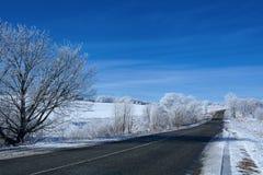 Straße im Schneewald Stockfotos