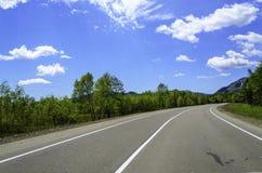 Straße im Sommerwald Lizenzfreie Stockbilder