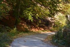 Straße im Spätherbst Stockfotografie
