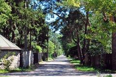 Straße im städtischen Grün lizenzfreie stockbilder