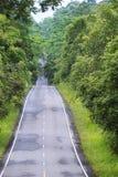 Straße im Wald lizenzfreie stockbilder