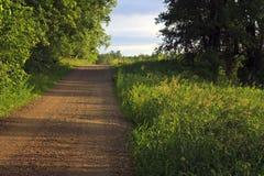 Straße im Wald/in der Wiese Lizenzfreies Stockbild