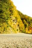 Straße im Waldherbst Lizenzfreies Stockfoto