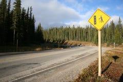 Straße im Wildnisbereich lizenzfreies stockfoto