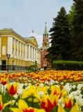 Straße innerhalb Kremlin, Moskau Stockbilder