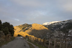 Straße in Korsika Lizenzfreies Stockfoto