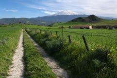 Straße kreuzt Ackerland in Sizilien Lizenzfreie Stockfotografie