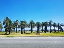 Straße in Melbourne lizenzfreie stockfotografie