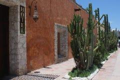 Straße mit attraktiver mexikanischer Note, die die Aufmerksamkeit fängt stockfotografie