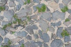 Straße mit Kopfstein und durch Gras überwältigt Beschneidungspfad eingeschlossen stockbilder