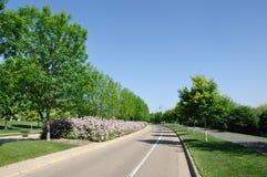 Straße mit landschaftlich verschönertem Mittelpunkt Stockfotos