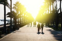 Straße mit Palmen mit gehenden Touristen Stockbild