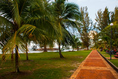Straße mit Palmen, Stadt Bintulu, Borneo, Sarawak, Malaysia Pantai Temasya Tanjung Batu Stockbild
