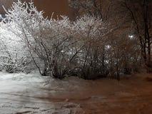 Straße mit Schnee lizenzfreie stockbilder