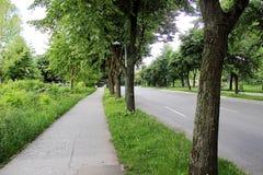Straße mit vielen Bäumen Stockfotos