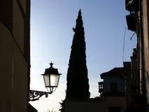 Straße mit Zypresse und Laternenpfahl stockfoto