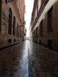 Straße nach Regen lizenzfreies stockbild