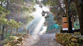 Straße nach Santiago der Epilog zwischen Santiago und Finisterre La Coruna, Spanien Stockfoto